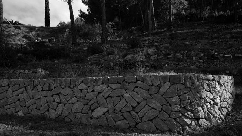 Restanque pierre sèche montée en spicatum